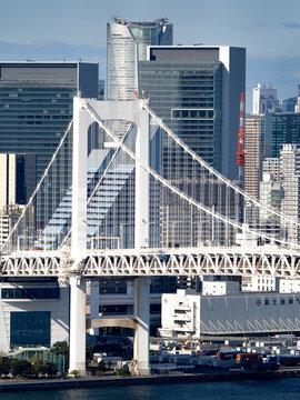 レインボーブリッジと東京港。2020年11月、東京都港区にて撮影。