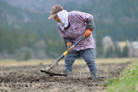土を耕す老女