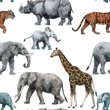 113 Wall Tattoo Jungle Animals Elephant Giraffe Panda Lazy Animal Monkey
