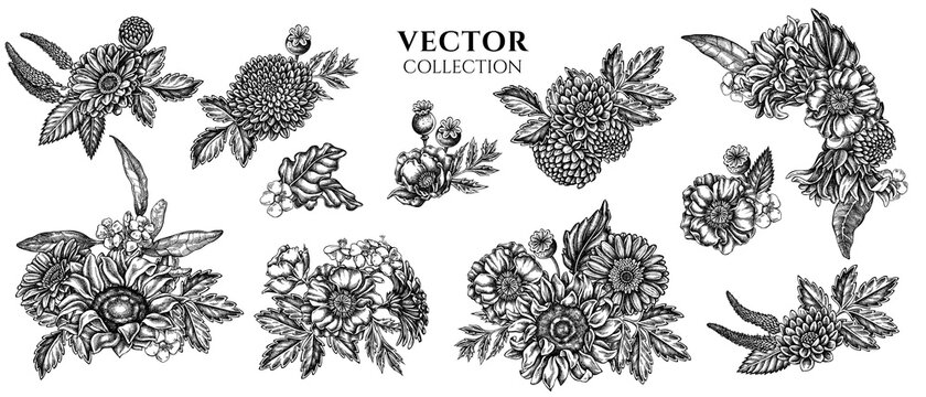 Flower bouquet of black and white poppy flower, gerbera, sunflower, milkweed, dahlia, veronica