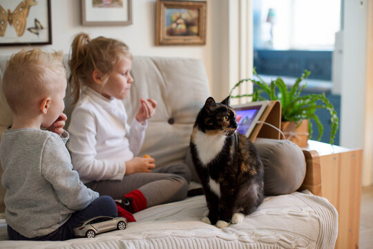 Kids with a cat are sitting on the couch