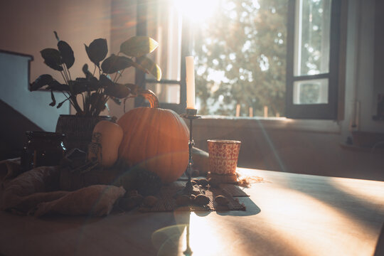 Halloween pumpkin with candle lit in a table. Skeleton, candles, nuts. Teal and orange beautiful still life.