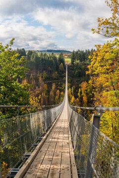 Geierlay suspension bridge in autumn, Mörsdorf, Germany