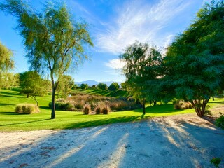 desert oasis mountain scene featuring lush green trees and bright blue sky with mountains in the...