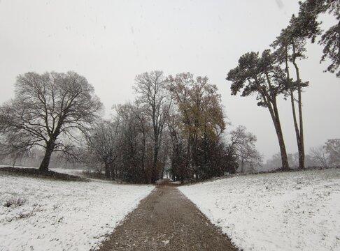 Via innevata Parco Villa Borromeo d'Adda