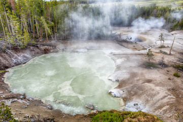 Steaming Geysers at Norris Basin in Yellowstone