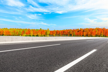 Asphalt road and colorful forest natural landscape in autumn season.