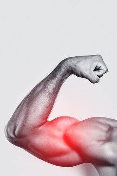 Muscular arm. Specialization for biceps training.
