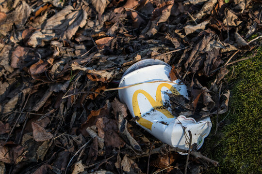 Empty disgarded MacDonalds Drink cup with platic lid lying as litter in dead dried leaves.