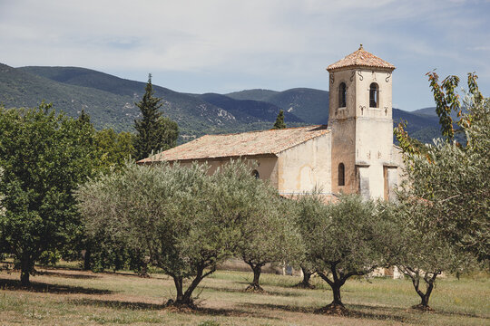 Church and olive trees in Lourmarin, Provence, France