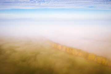 Wall Mural - Breathtaking top view of the misty valley in the morning. Aerial photography, drone shot.