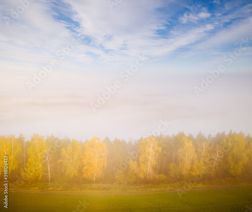 Wall mural Attractive top view of the misty valley in the morning. Aerial photography, drone shot.