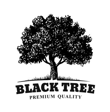 old tree with text emblem on white background