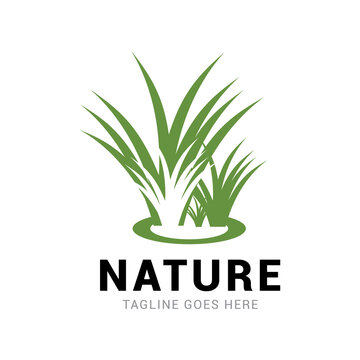 Grass nature logo vector template.