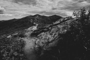 Czarno-biały krajobraz górski z wędrówki po połoninach, Bieszczady, Polska