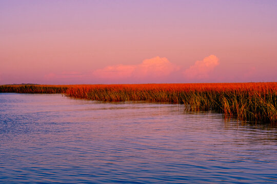 Grasslands at dusk along the Georgia Coast