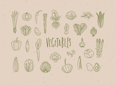 Vegetables icons handmade line style beige