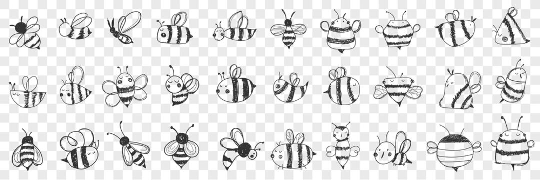 Bees doodle set. Collection of hand drawn various striped bees with wings with different patterns flying isolated on transparent background. Illustration of beautiful insect and honey lover