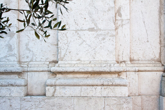 Classical Molding Details :Plastered Wall with Leaves in foreground