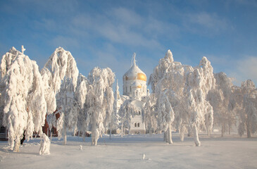 A snow-white temple with golden domes on a frosty winter day, surrounded by trees covered with frost. Fotomurales