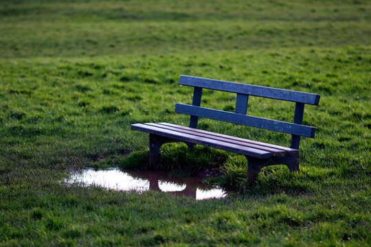 Old metal bench on the grass field and a big puddle in front of it, which makes it impossible to use. Concept photo.