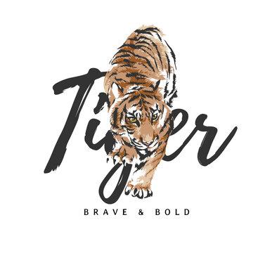 tiger slogan with tiger crawling graphic illustration