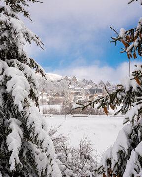 village de montagne et sapins enneigés, Super Besse, Auvergne, France