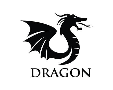 dragon head logo, vector icon illustration