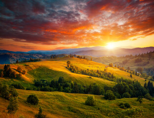 Wall Mural - Incredible summer sunset in a mountain valley. Location place of Carpathian mountains, Ukraine, Europe. Vibrant photo wallpaper. Breathtaking nature photography. Discover the beauty of earth.