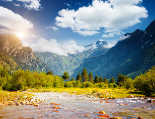 Wall Mural - Picturesque view of the Caucasus Mountains on a sunny day. Zemo Svaneti, Georgia country.