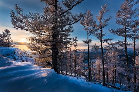 Snow Wolf peak rime