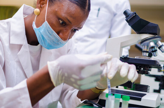 two young african health care researchers working in life science laboratory about the cure of the outbreak in the society.