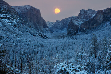 Winter Yosemite