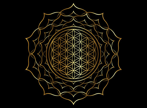 Flower of Life, Yantra Mandala in the golden lotus flower, Sacred Geometry, Metatron cube. Bright luxury symbol of harmony and balance. Mystical gold talisman, vector isolated on black background