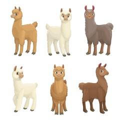 Lama, alpaca, guanaco, llama and vicuna animals cartoon vector set. Camelid mammals with white, brown and grey wool, cute farm llama animals with furry faces and ears, long necks and legs