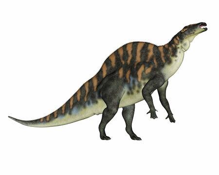 Ouranosaurus dinosaur - 3D render