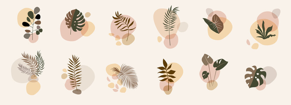 Abstract floral compositions. Boho story templates. Fluid organic shapes, neutral colors. Bohemian exotic leaf prints. Mid Century Modern design. Vector leaves illustration