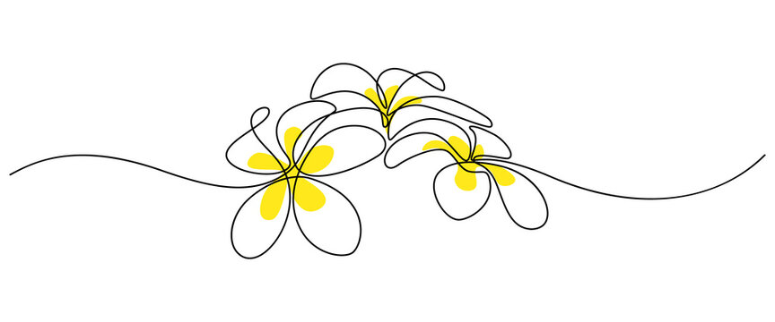 Plumeria flowers in continuous line art drawing style. Group of fragrant tropical plumeria (frangipani, jasmine) flowers. Minimalist black linear sketch on white background. Vector illustration