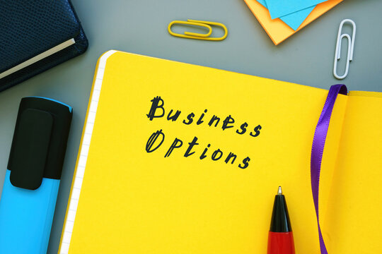 Business concept meaning Business Options with inscription on the page.