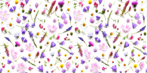 Fototapete - Flowers  flat lay. Seamless pattern from plants, wild flowers isolated on white background, top view. The concept of summer, spring, Mother's Day, March 8.