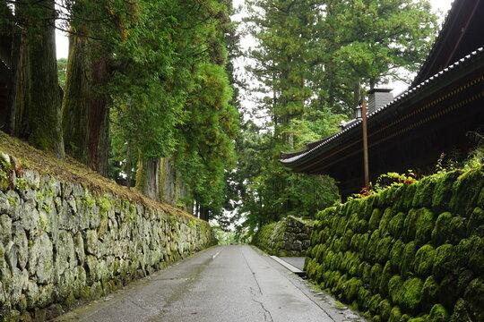 UNESCO world heritage site in Nikko Toshogu, Tochigi prefecture, Japan, Tokugawa Shogun - 日光東照宮 栃木県 日本