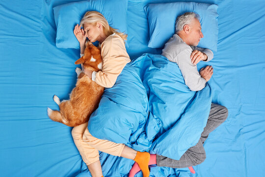 Above shot of relaxed senior married woman and man sleep peacefully in bed pose back to each other on blue bedclothes. Sleeping female embraces dog with love. Closeness bedtime and family concept