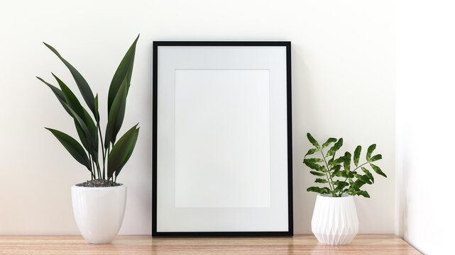 A picture frame on the floor with a flower vase.
