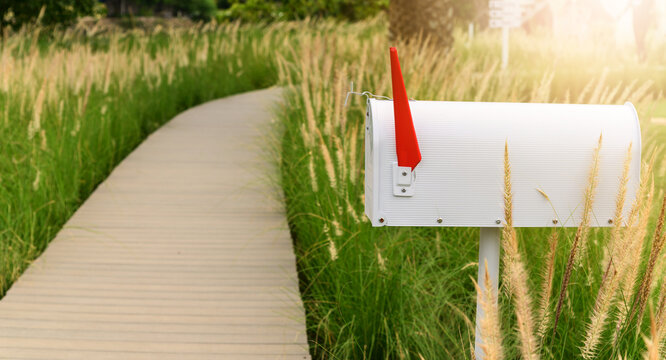 White metal mailbox or post box side of wooden way with grass flowers