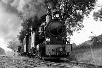 Dampflokomotive Frontal Eisenbahn schwarz weiß Graustufen Kleinbahn Plettenberg Lok Schmalspurbahn Qualm Deutschland Nostalgie Romantik Zug Oldtimer Sauerland Vintage Herscheid Tal Landschaft Natur