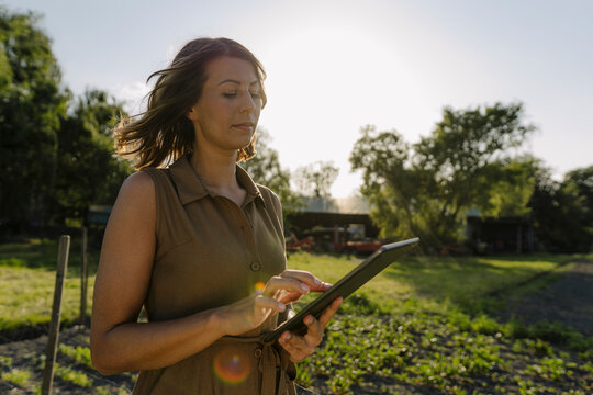 Young woman using tablet on a farm in the countryside