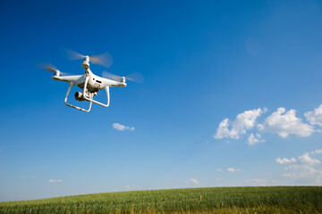 Wall Mural - drone quadcopter on green corn field