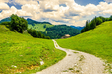 Wall Mural - old country road at the european alps