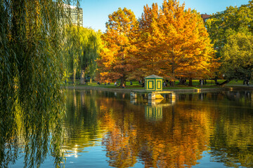 Vibrant colors reflected in the Boston Public Garden lagoon