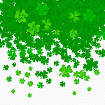 Green shamrock and clover on transparent background, St. Patrick's Day celebration and irish symbol, vector illustration